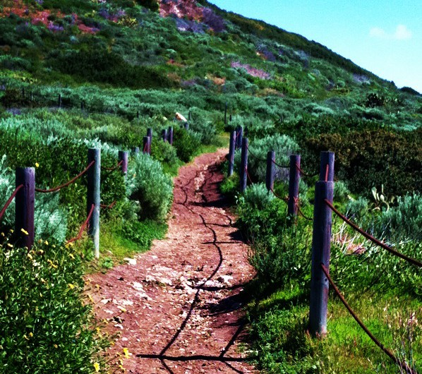 Gina_PV Trail 2